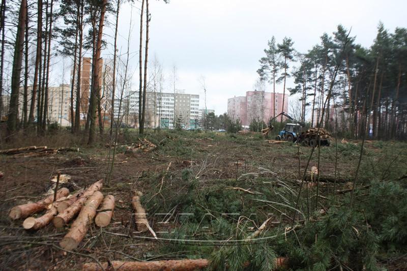 леса стройки фото
