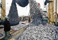 Закон о любительском и спортивном рыболовстве могут принять в 2018 году