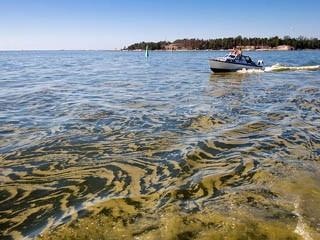 Экологическая проблема Балтийского моря