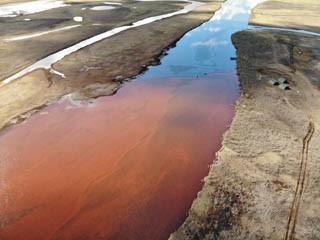 Что делать с экологической катастрофой в Норильске?